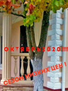 Акция «Октябрь 2020» !!! Сезон низких цен!